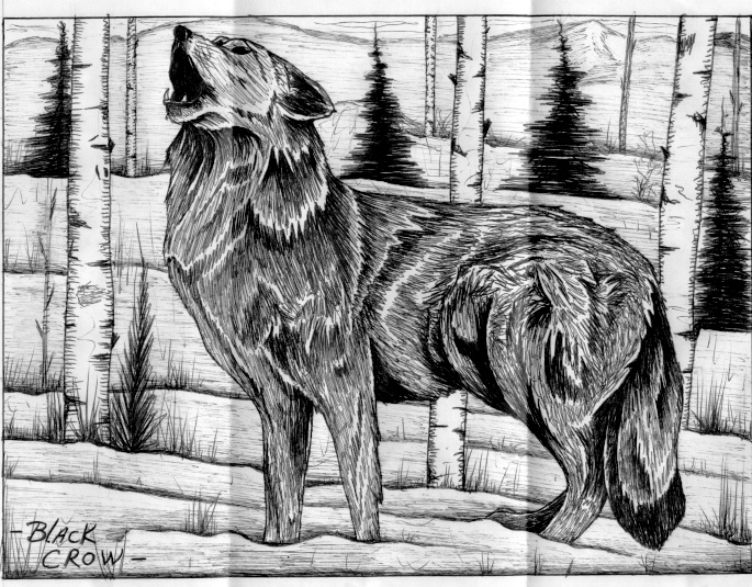 Black Wolf Howling Drawing Black Wolf Howl...